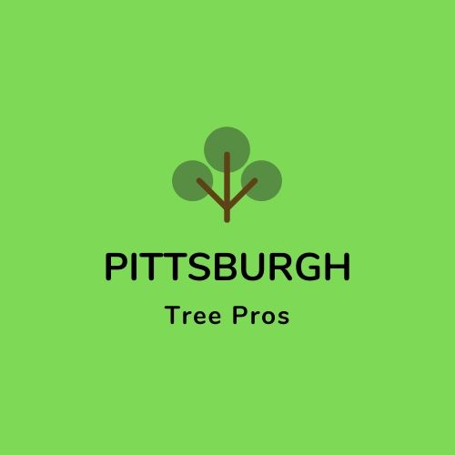 Pittsburgh Tree Pros